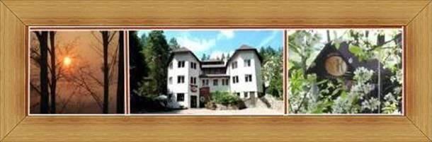 Hotelik Olsztyn Restauracja atrakcje SAK