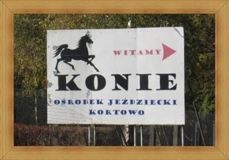 Ośrodek Jeździecki UWM Kortowo Olsztyn stajnie dla koni
