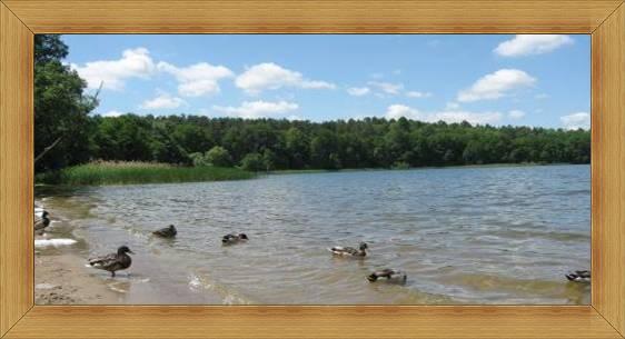 Piaszczyste plaże Olsztyn jeziora atrakcje Warmia i Mazury