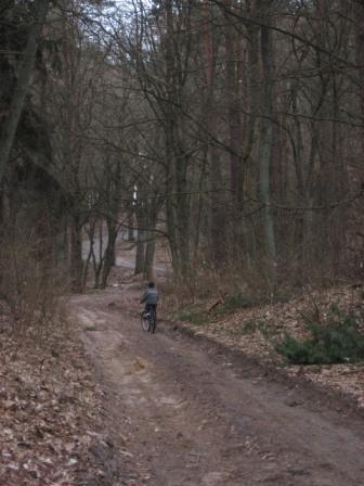 Gościniec Niborski – część Szlaku Królewskiego