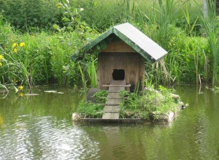 Domek kaczek z wygodami na wodzie.