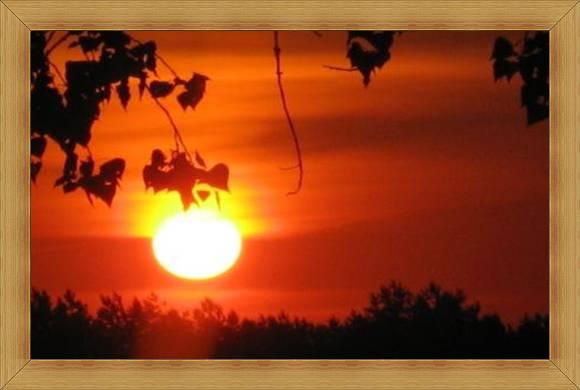 Atrakcyjny Olsztyn widoki Warmia i Mazury słońce o poranku