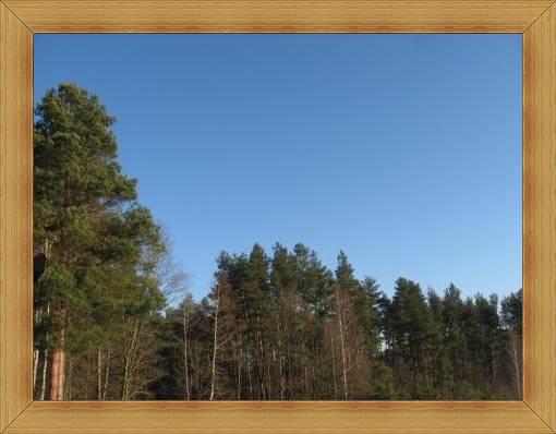 Noclegi Olsztyn pogoda na weekend