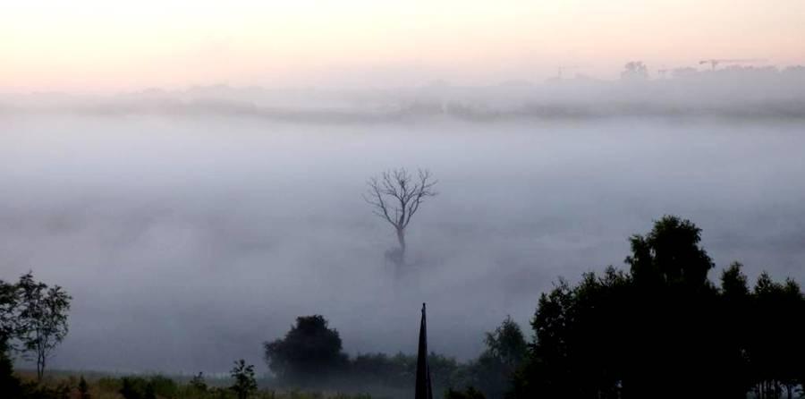 Baśniowy Olsztyn Tajemnicze Mgły Nad Łyną