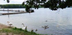 Jezioro Olsztyn Spotkanie z Naturą