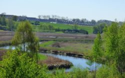 Olsztyn Rezerwat Nad Łyną