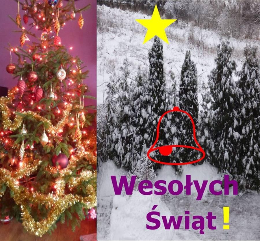 Olsztyn - Wesołych Świąt